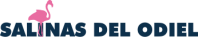 logo-salinas-web